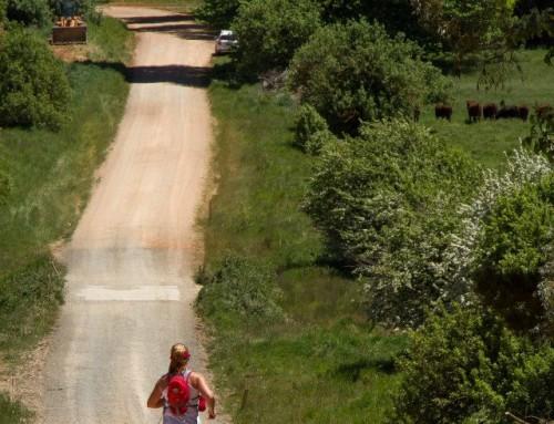 10 tips to start your running journey.